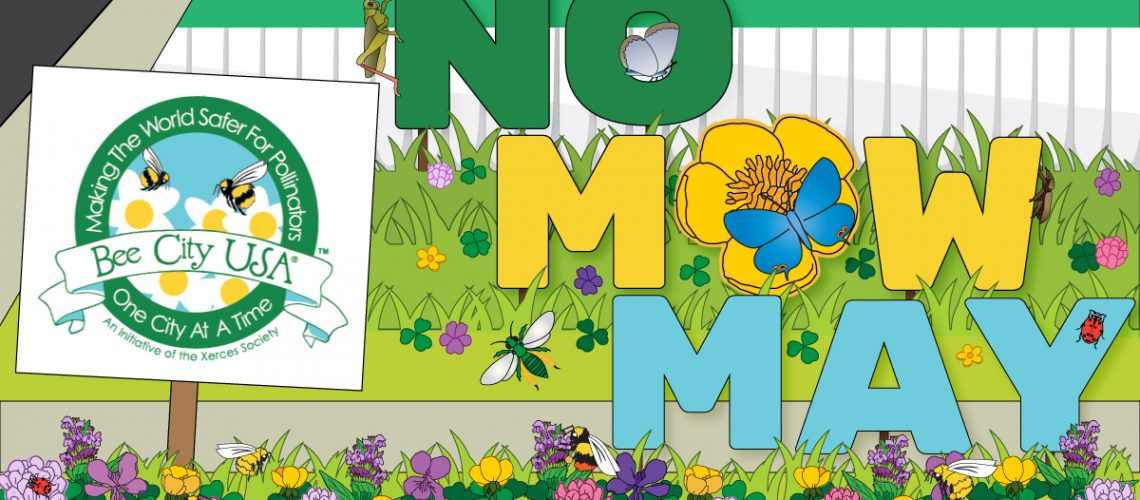 No-Mow-May_Twitter_BeeCity